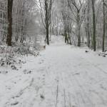 Düsseldorf sous la neige